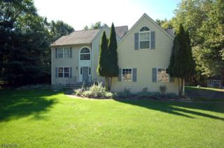 3 Cliffside Way, Andover Twp., NJ 07821 (MLS #3373211) :: The Dekanski Home Selling Team