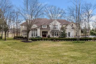 20 Dogwood Drive, Readington Twp., NJ 08889 (MLS #3288783) :: The Dekanski Home Selling Team