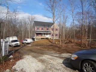91 Union Valley Rd, West Milford Twp., NJ 07435 (MLS #3298050) :: The Dekanski Home Selling Team