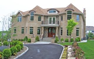 42 Carla Ct, North Haledon Boro, NJ 07508 (MLS #3300275) :: The Dekanski Home Selling Team