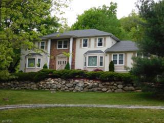 30 Saw Mill Rd, Kinnelon Boro, NJ 07405 (MLS #3308839) :: The Dekanski Home Selling Team