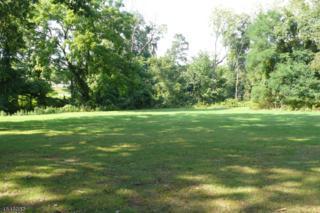 371 Davidson Ave, Franklin Twp., NJ 08873 (MLS #3328145) :: The Dekanski Home Selling Team