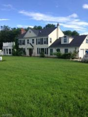 747 Route 625, Union Twp., NJ 08827 (MLS #3330287) :: The Dekanski Home Selling Team