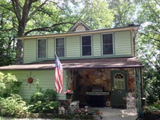 60 Walnut Ave, Frankford Twp., NJ 07826 (MLS #3331571) :: The Dekanski Home Selling Team