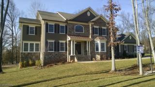 9 North Xing, Bridgewater Twp., NJ 08807 (MLS #3334117) :: The Dekanski Home Selling Team