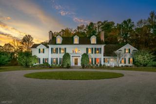 3 Mayfield Rd, Harding Twp., NJ 07960 (MLS #3335774) :: The Dekanski Home Selling Team