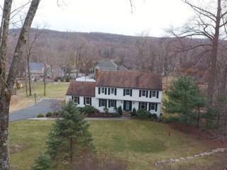 10 Deer Run, Sparta Twp., NJ 07871 (MLS #3340442) :: The Dekanski Home Selling Team
