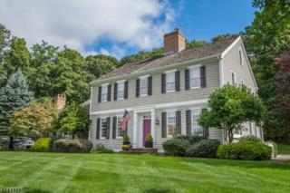 1 Red Oak Row, Chester Twp., NJ 07930 (MLS #3341277) :: The Dekanski Home Selling Team