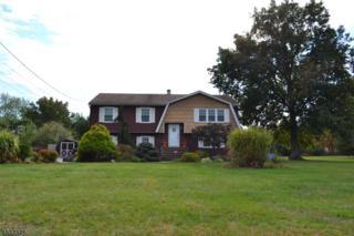 134 Mountain View Rd, Hillsborough Twp., NJ 08844 (MLS #3342008) :: The Dekanski Home Selling Team