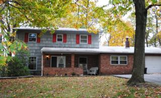 56 New Jersey Ave, Jefferson Twp., NJ 07849 (MLS #3342832) :: The Dekanski Home Selling Team