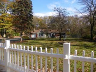104 School House Rd, Jefferson Twp., NJ 07438 (MLS #3345763) :: The Dekanski Home Selling Team