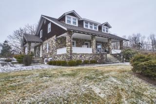 1913 Greenwood Lake Tpke, West Milford Twp., NJ 07421 (MLS #3352967) :: The Dekanski Home Selling Team