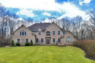 13 E Hidden Valley Ct, Andover Twp., NJ 07860 (MLS #3354153) :: The Dekanski Home Selling Team