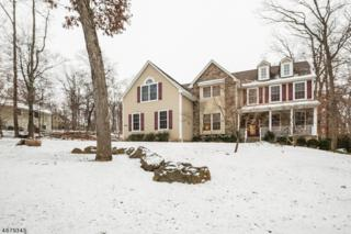 976 Rosemary Dr, Bridgewater Twp., NJ 07920 (MLS #3356134) :: The Dekanski Home Selling Team