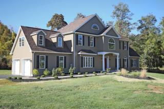 169 Drakestown Rd, Washington Twp., NJ 07840 (MLS #3357519) :: The Dekanski Home Selling Team