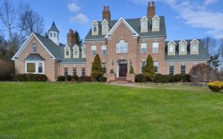 10 Yorkshire Dr, Randolph Twp., NJ 07945 (MLS #3360415) :: The Dekanski Home Selling Team