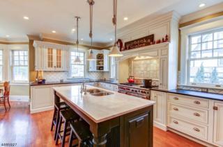 9 Green Hill Rd, Madison Boro, NJ 07940 (MLS #3363172) :: The Dekanski Home Selling Team
