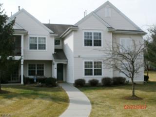 96 Overlook Drive, Lopatcong Twp., NJ 08886 (MLS #3363340) :: The Dekanski Home Selling Team