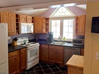 23 Ferris Ln, Jefferson Twp., NJ 07438 (MLS #3363895) :: The Dekanski Home Selling Team