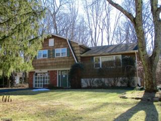 21 Judith Ann Dr, Ringwood Boro, NJ 07456 (MLS #3365144) :: The Dekanski Home Selling Team