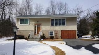41 Cedar Tree Dr, Vernon Twp., NJ 07422 (MLS #3366377) :: The Dekanski Home Selling Team