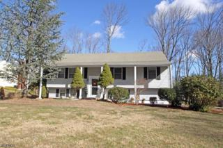 4 John Ct, Randolph Twp., NJ 07869 (MLS #3366997) :: The Dekanski Home Selling Team
