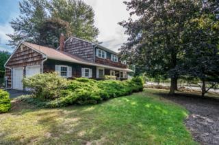 15 Condit St, Roxbury Twp., NJ 07876 (MLS #3368047) :: The Dekanski Home Selling Team