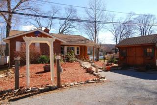 111 Lake Drive, Byram Twp., NJ 07874 (MLS #3368644) :: The Dekanski Home Selling Team