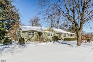 14 Forest Hill Dr, Readington Twp., NJ 08822 (MLS #3368678) :: The Dekanski Home Selling Team