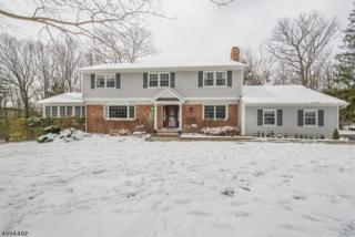 18 Hilltop Rd, Kinnelon Boro, NJ 07405 (MLS #3370176) :: The Dekanski Home Selling Team
