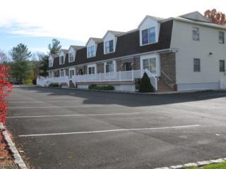 33-39 Kennedy Rd, Green Twp., NJ 07821 (MLS #2732461) :: The Dekanski Home Selling Team