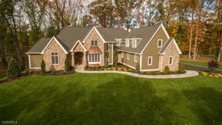11 Brady Dr West, Peapack Gladstone Boro, NJ 07934 (MLS #3284645) :: The Dekanski Home Selling Team