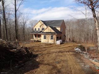 81 Union Valley Rd, West Milford Twp., NJ 07435 (MLS #3298331) :: The Dekanski Home Selling Team