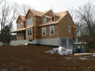 3 Countryside Lane, Warren Twp., NJ 07059 (MLS #3324692) :: The Dekanski Home Selling Team