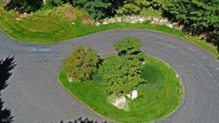 10 Potter Ln, Tewksbury Twp., NJ 08833 (MLS #3327826) :: The Dekanski Home Selling Team
