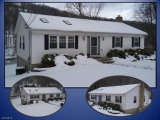 33 E Shore Dr, Vernon Twp., NJ 07462 (MLS #3355451) :: The Dekanski Home Selling Team