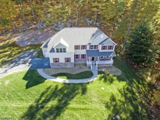 16 Liberty Trl, Andover Twp., NJ 07860 (MLS #3226110) :: The Dekanski Home Selling Team