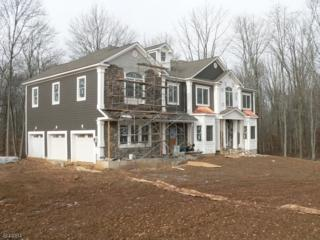 5 Countryside Lane, Warren Twp., NJ 07059 (MLS #3324695) :: The Dekanski Home Selling Team
