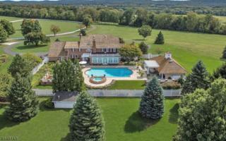 73 Pequest Rd, Green Twp., NJ 07821 (MLS #3333350) :: The Dekanski Home Selling Team