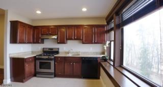 28 Sunset Ter, Unit 4, Mount Arlington Boro, NJ 07856 (MLS #3339958) :: The Dekanski Home Selling Team