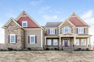 3 Severns Way, Delaware Twp., NJ 08559 (MLS #3318062) :: The Dekanski Home Selling Team