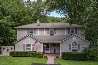 98 Lake Shore Rd East, Hardyston Twp., NJ 07460 (MLS #3323321) :: The Dekanski Home Selling Team