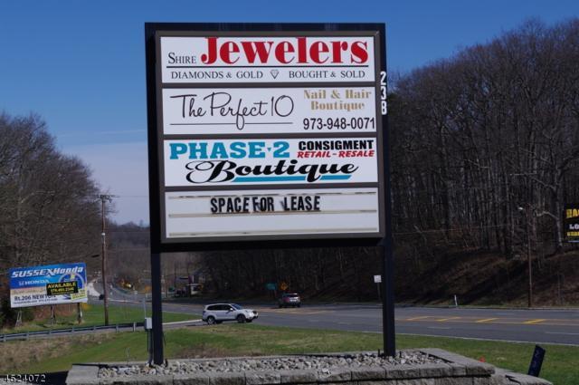 6 238 Route 206 N, Branchville Boro, NJ 07826 (MLS #3211948) :: The Dekanski Home Selling Team