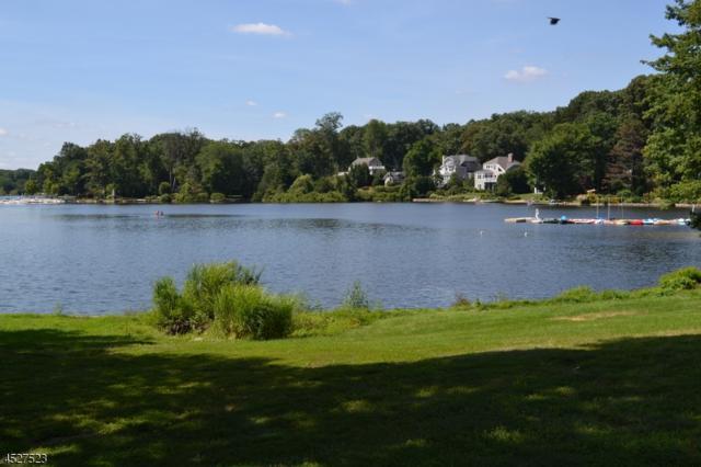 26 Lake Dr, Mountain Lakes Boro, NJ 07046 (MLS #3215190) :: The Dekanski Home Selling Team