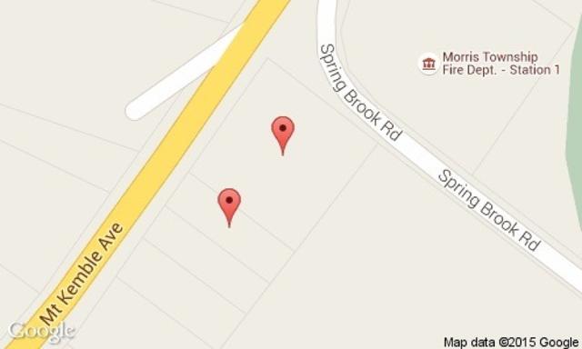 234 Mt Kemble Ave, Morris Twp., NJ 07960 (MLS #3242719) :: The Dekanski Home Selling Team