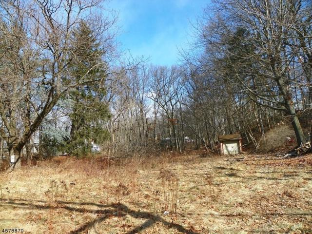 367 Route 46, Mountain Lakes Boro, NJ 07046 (MLS #3263642) :: The Dekanski Home Selling Team