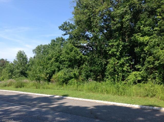 22 Exeter Ln, Hardyston Twp., NJ 07410 (MLS #3263784) :: The Dekanski Home Selling Team