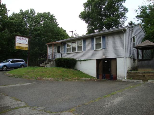 216 Route 206, Byram Twp., NJ 07821 (MLS #3291290) :: The Dekanski Home Selling Team