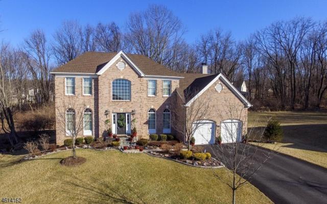 3 Augie Pl, Mount Olive Twp., NJ 07828 (MLS #3295976) :: The Dekanski Home Selling Team