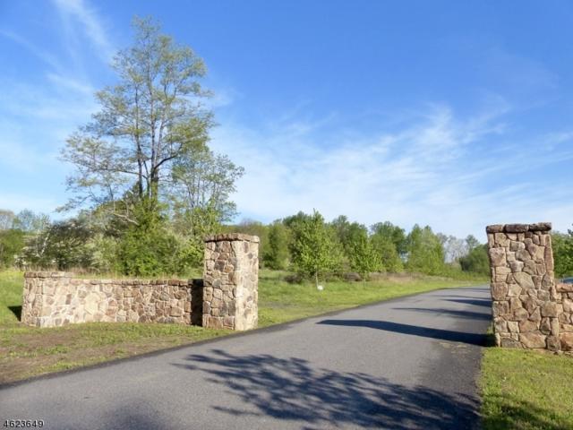 4 Rosehill Ct, Bernardsville Boro, NJ 07924 (MLS #3307053) :: The Dekanski Home Selling Team